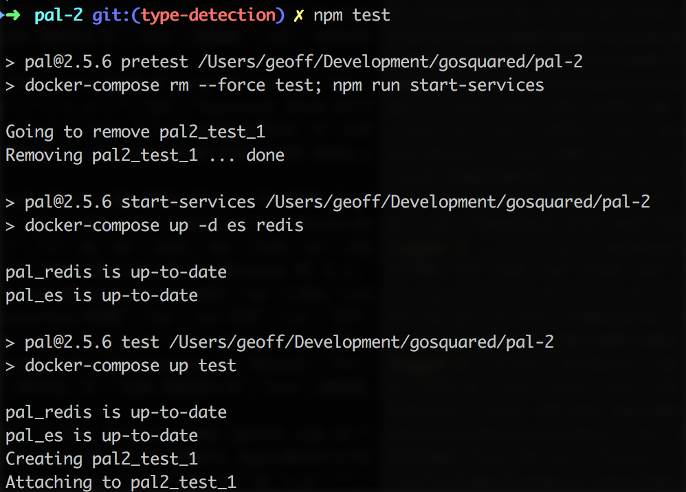 Testing with Docker - the npm test command
