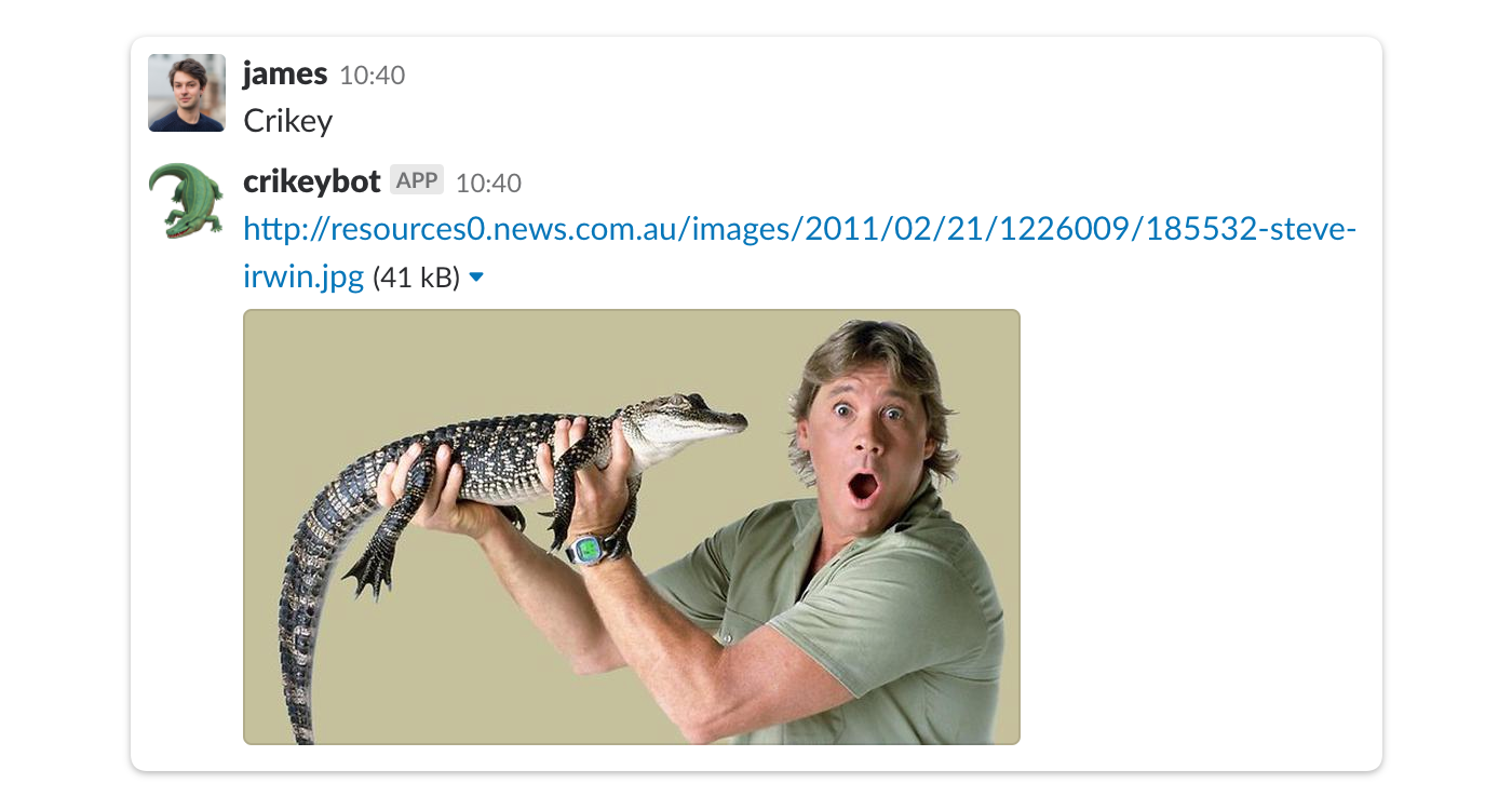 crikey slack integration