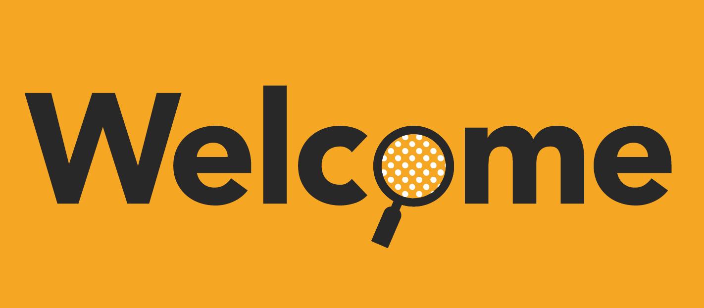 start analysing website visitors