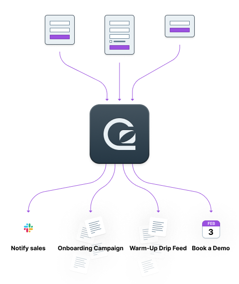 Automatically segment your campaigns with GoSquared Forms